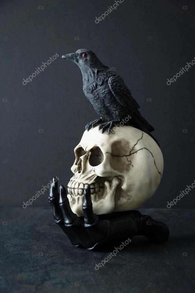 Skull with black bird in skeleton hand