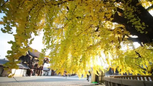 podzim Nishi Hongandži chrámu v Kjótu