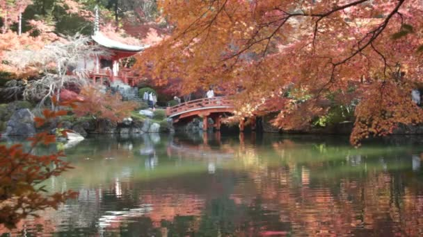 červených javorů v japonské zahradě