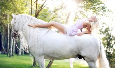 Adorable woman lying on the majestic horse