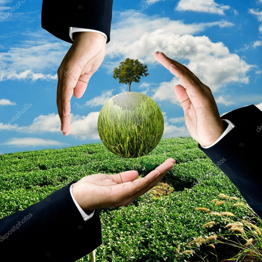Businessman carry green plant at green tea farm