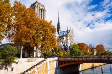 Upstairs from the Seine to Notre Dame