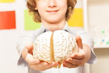 boy holding cerebrum model
