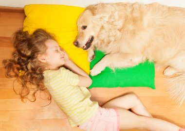 Top view of Golden Retriever, protecting it's owner dream, while little girl sleeping on her lovely dog's pillow stock vector