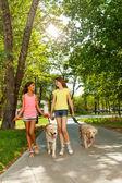 Fényképek két tizenéves, gyaloglás a kutyák