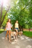 Fényképek tizenéves lány séta kutyák