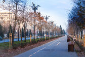 Fotografie View of Bulevardul Unirii