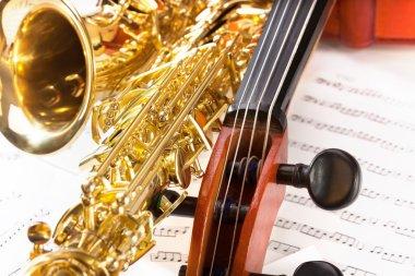 Violoncello tuning pegs and alto saxophone