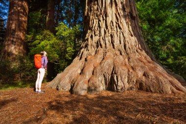 Woman standing near big tree