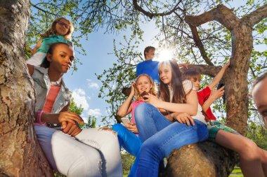 teenagers sitting together on tree