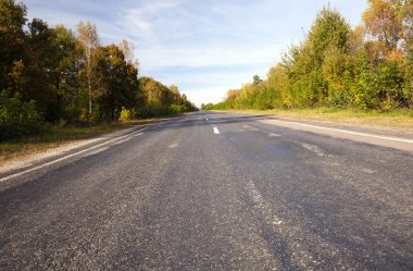 paved road in autumn -