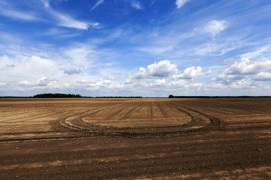 plowed field. sky