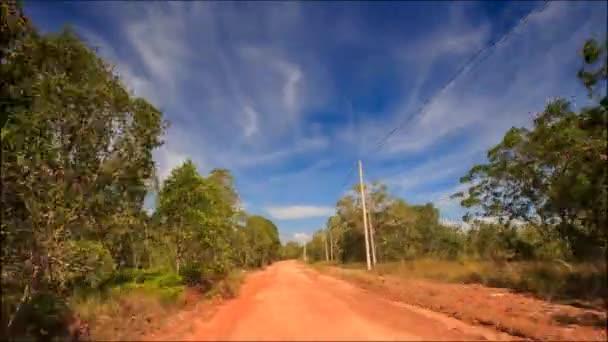 zelené lesní cesta
