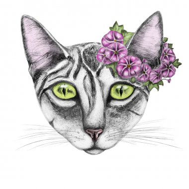 Hand draw of cat with wreath