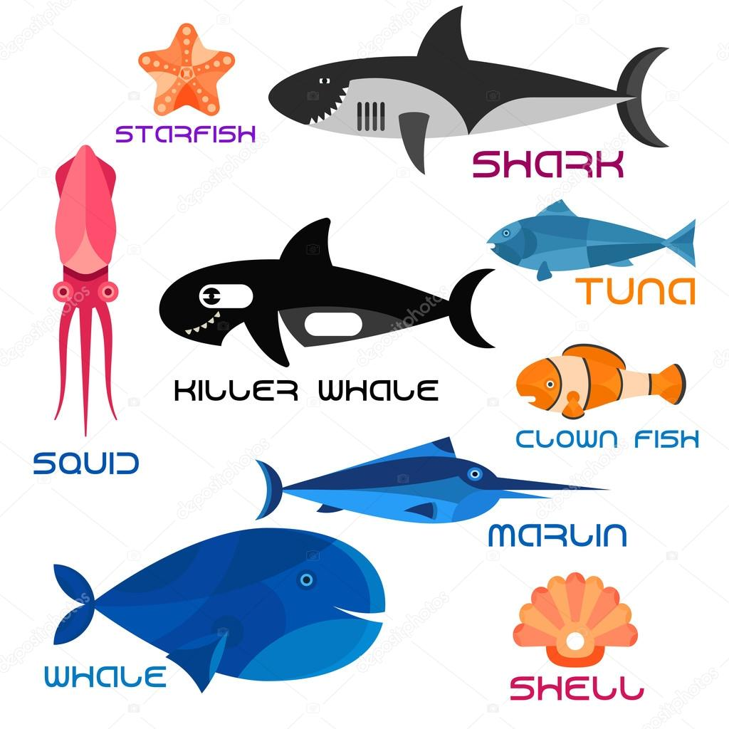 cartoon marine animals in flat style u2014 图库矢量图像 seamartini