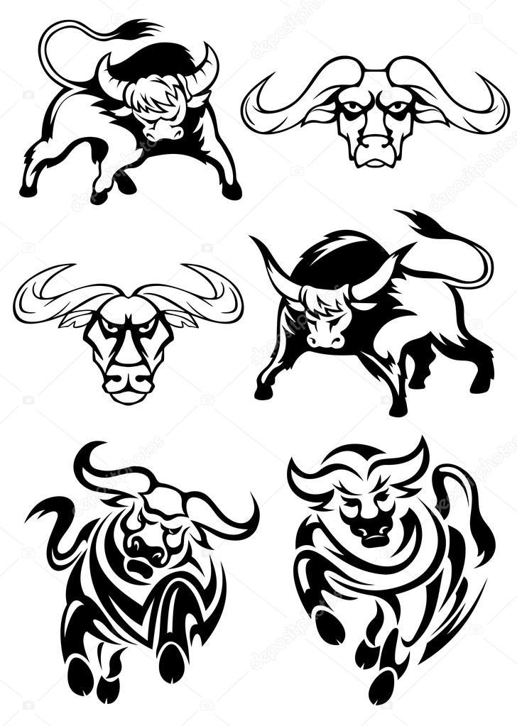 Imágenes: bufalos para colorear   Blanco y negro toros o búfalos ...