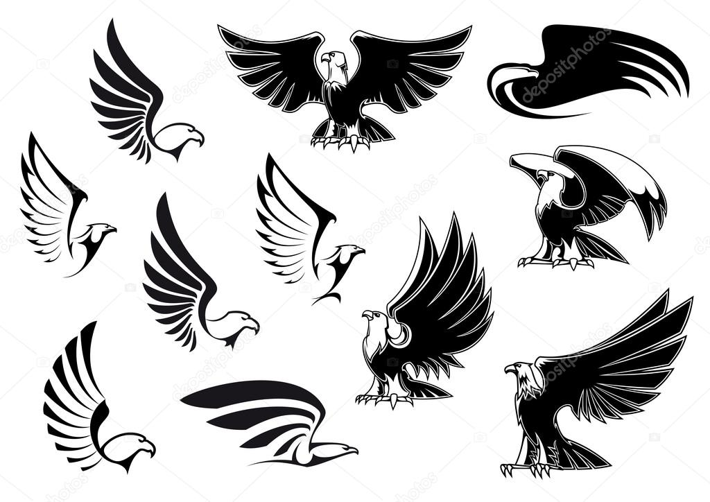 57f56dcac Eagles for logo, tattoo or heraldic design — Stock Vector ...