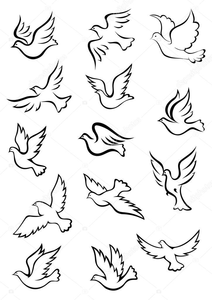 Наброски грациозные птицы голубь и голубка — Векторное ...