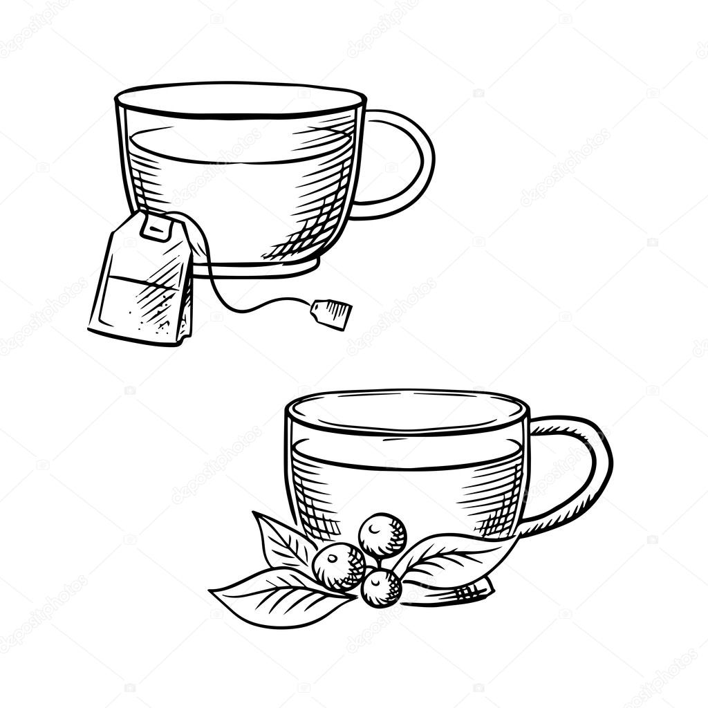Cup Of Tea With Teabag And Cowberry Sketches Vector Image By C Seamartini Vector Stock 87903900