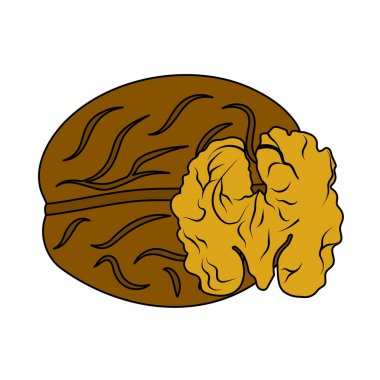 Walnut Icon. Editable Outline With Color Fill Design. Vector Illustration. icon