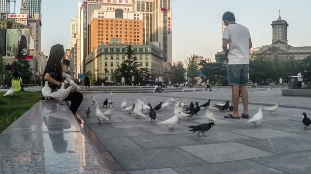 People have fun with pigeons