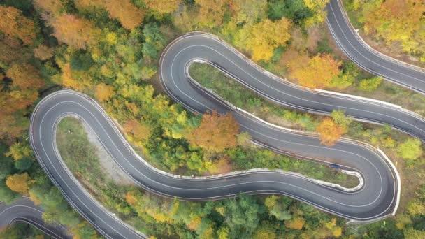 Luftaufnahme einer kurvenreichen Straße durch den bunten Herbstwald