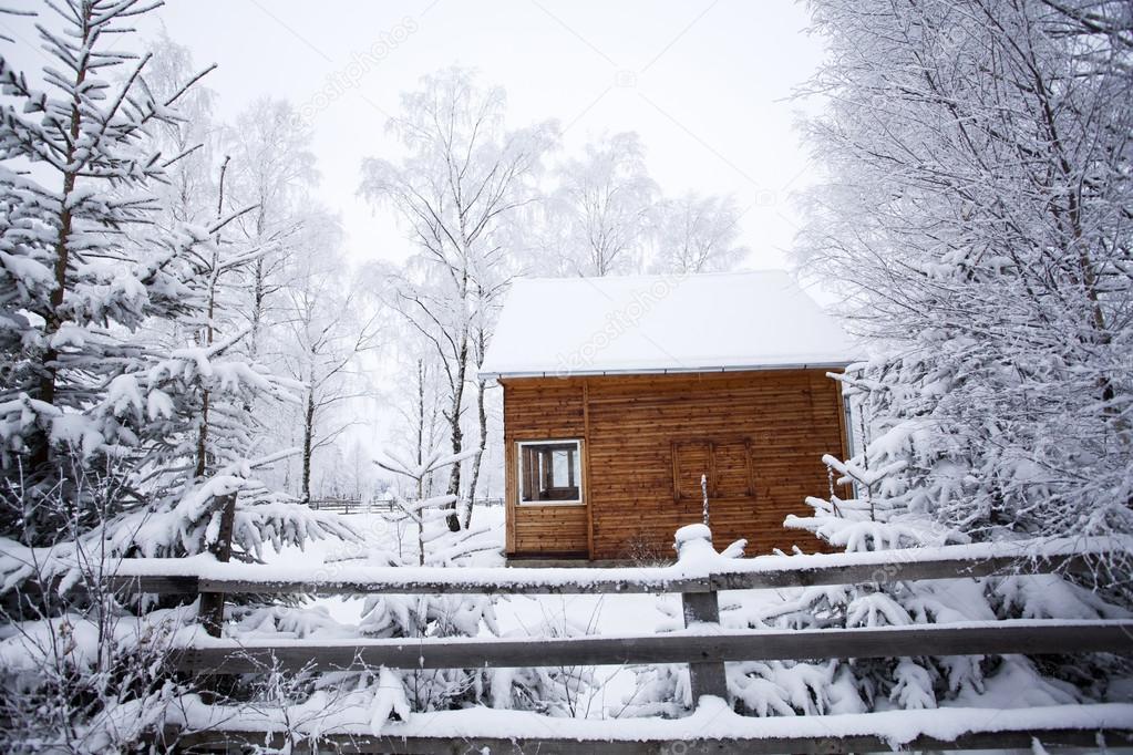 Kış Landscapewith Karlı Dağ Evi Stok Foto Erika8213 86463324