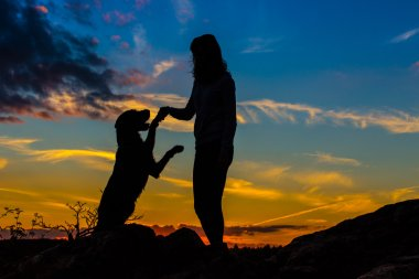 A silhouette of a young woman and her mutt dog.