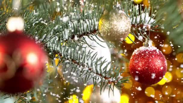 Christmas Spruce Branches with Snowflakes Falling. Super Slow Motion.