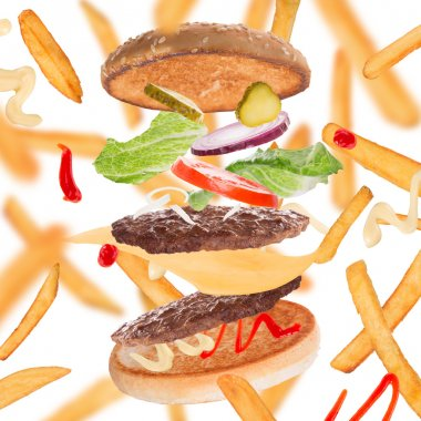 French fries with burger