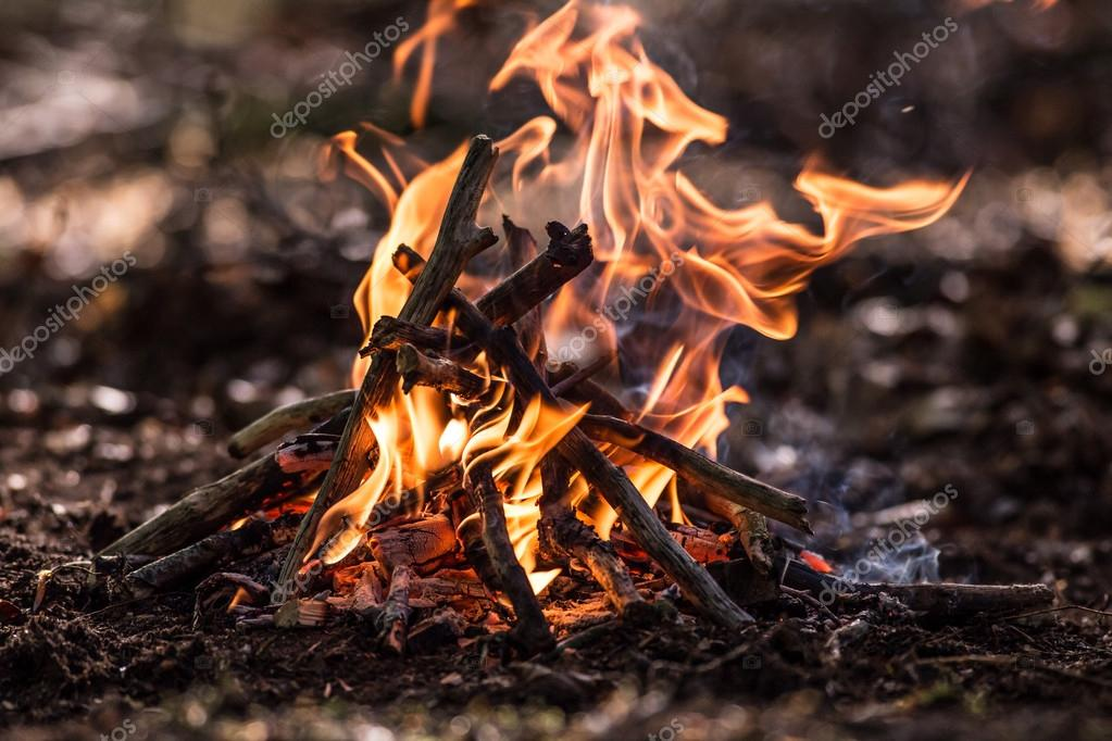 Bonfire in spring forest