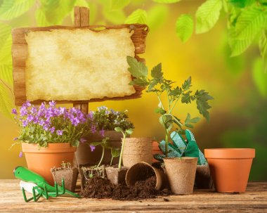 Gardening tools and flowers on wooden background