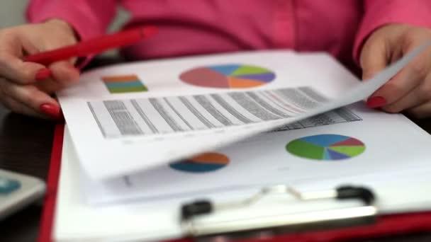 finanční zpráva a schéma