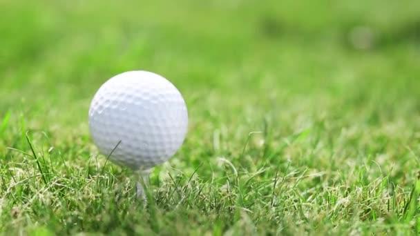 Aplikovat je rána do golfového míčku na trávě.