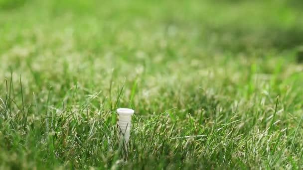 Golfer putting ein Golfball und Streiks. Golfball hautnah