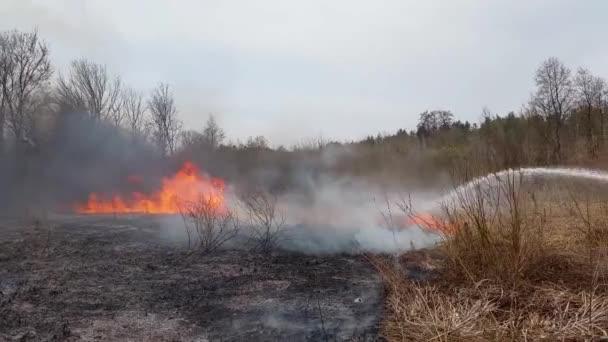 Proudem vody z hadice hasí požár lesa