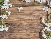 Virágzó cseresznyefa ágakat, régi fából készült asztal fölé