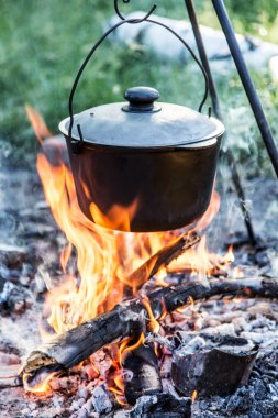 Cooking pot under the bonfire in the forest.