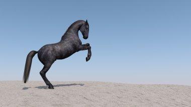 Black horse on Desert Sand Dune
