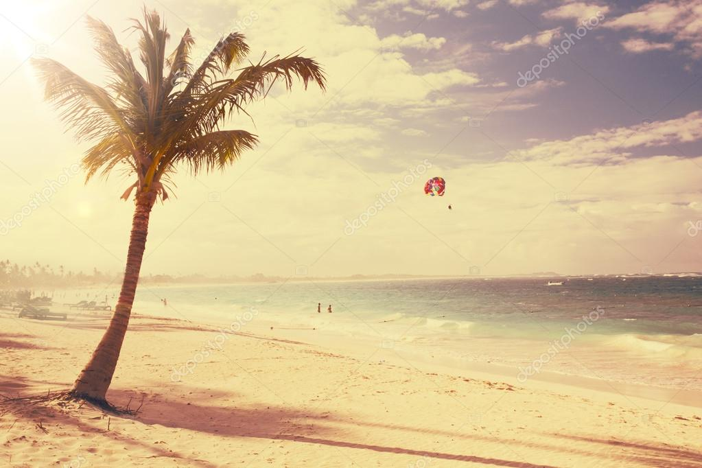 Art Untouched Caribbean tropical beach
