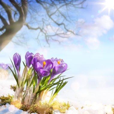 Art spring flowers stock vector