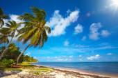 Photo Art  beautiful seaside view  background