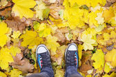 Fotografie feet in chucks standing on leaves