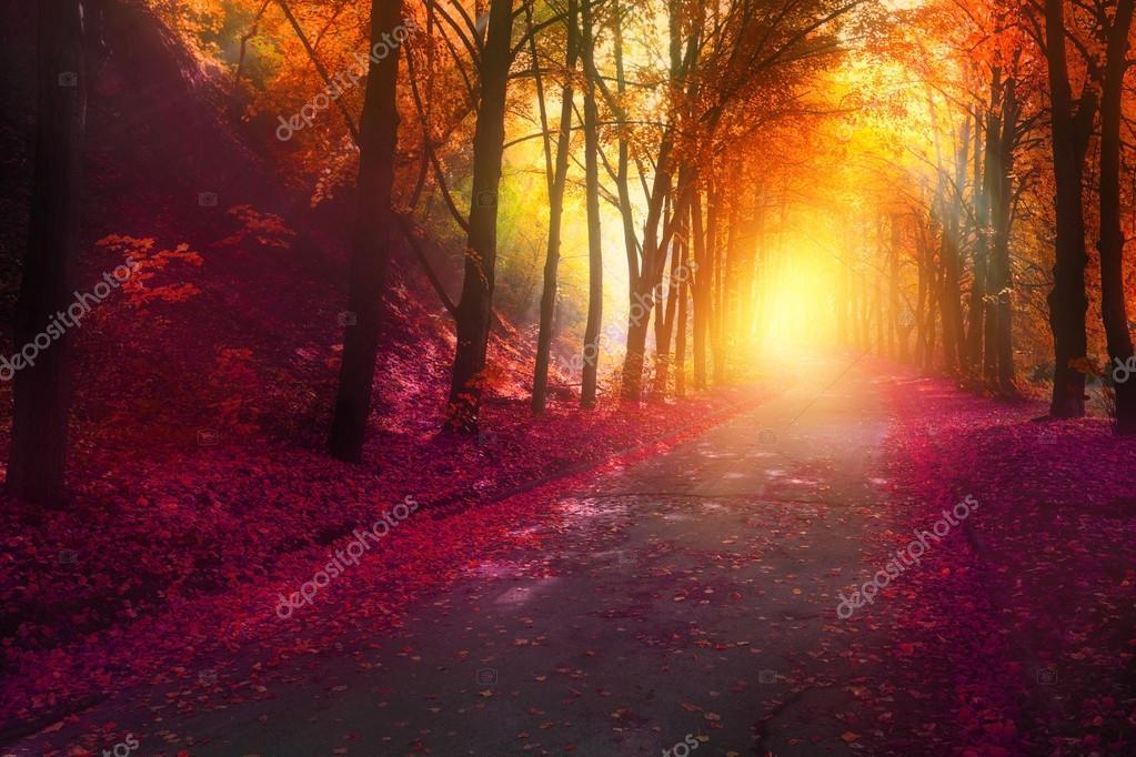 fantasy scene in autumn park with sun rays
