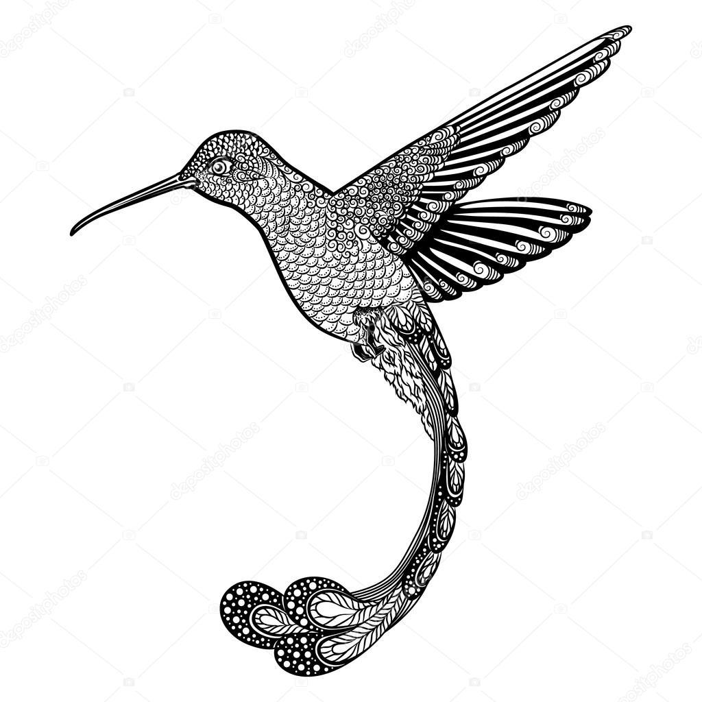 beijaflor estilo zentangle ilustração vetorial imagem