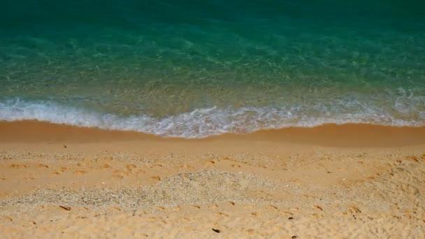 Odlehlé tropická pláž ráno
