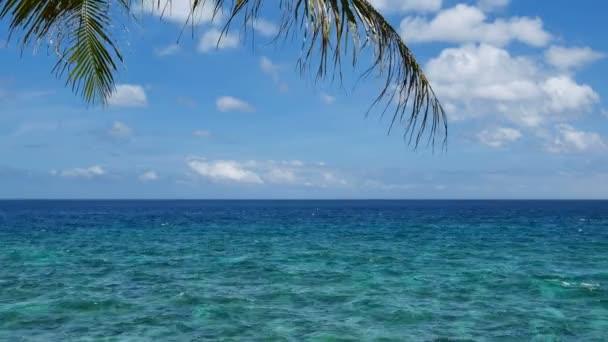 tropické mořské scenérie