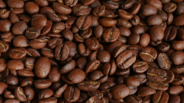 Light roasted coffee beans in UHD