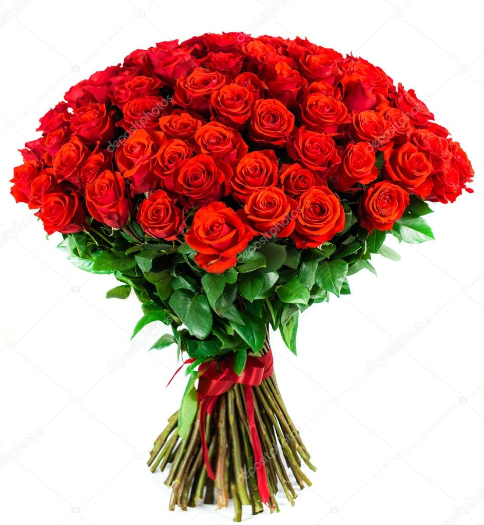 bouquet of 101 bright red rose on a white background