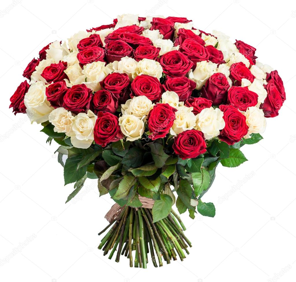 white rose dating site Plentyoffish dating forums are a place to meet singles and get dating advice or share dating experiences etc hopefully you will a white rose would probably be.